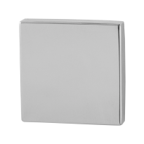 GPF0900.42 RVS pol bl vierk roz 50x50x8