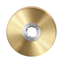GPF1100.00P4 PVD m sat ronde roz 50x8mm