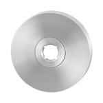 GPF1100.00 rozet 50x8mm RVS geborsteld
