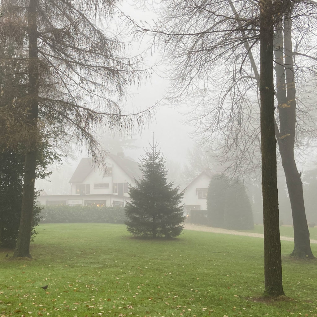 Ten Hulscher pand in de mist